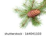 pine cone | Shutterstock . vector #164041103