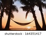 Hammock And Palm Trees On The...