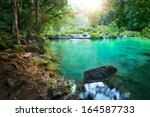 Rain Forest National Park In...
