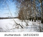 winter new year's forest... | Shutterstock . vector #165132653