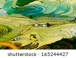 beautiful terraced rice field... | Shutterstock . vector #165244427