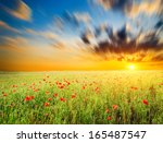 field with green grass and red... | Shutterstock . vector #165487547