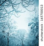winter landscape | Shutterstock . vector #165700013