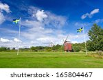 Summer Field With Swedish Flags.