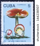 Small photo of CUBA - CIRCA 1989 A stamp printed in the CUBA showing Amanita caesarea, circa 1989