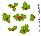 set of christmas holly leaves | Shutterstock .eps vector #166247273