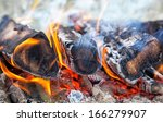 burning fire wood in the fire | Shutterstock . vector #166279907