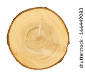 tree trunk cross section ... | Shutterstock . vector #166449083