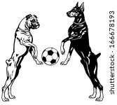 agility,animal,ball,black,boxer,breed,bulldog,canine,deutcher,doberman,dog,football,game,german,illustration