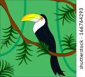 toucan on tree | Shutterstock . vector #166764293