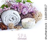 spa background. shallow dof | Shutterstock . vector #166843817