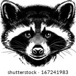 black and white vector sketch... | Shutterstock .eps vector #167241983