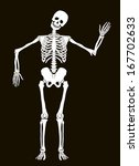 Funny Vector Skeleton Isolated...