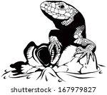 Reptile   Skull