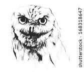 drawn owl | Shutterstock .eps vector #168318647