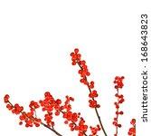Christmas Motif Plant...