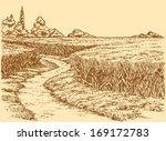 vector summer landscape. a dirt ...   Shutterstock .eps vector #169172783