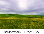 farmhouse and green sloping... | Shutterstock . vector #169246127