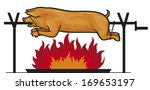 roasted pig on a spit    Shutterstock .eps vector #169653197