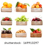 set of orange  tangerine ... | Shutterstock . vector #169913297