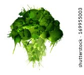 broccoli made of colorful... | Shutterstock . vector #169955003