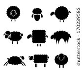 Black Silhouette Of Sheep On A...