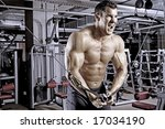 body builder working out at gym | Shutterstock . vector #17034190