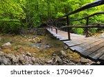 Bridge In The Canyon. Beautifu...