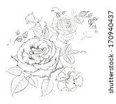 bouquet of roses. vector... | Shutterstock .eps vector #170940437
