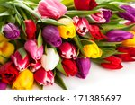 Bunch Of Spring Tulips With...