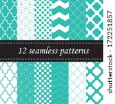 twelve seamless geometric... | Shutterstock .eps vector #172251857