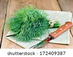 Bundle Of Dill  Tied With Twin...