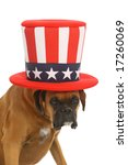 dog with american hat | Shutterstock . vector #17260069