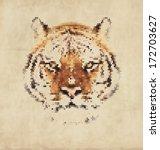 vintage geometric tiger design   Shutterstock .eps vector #172703627