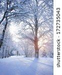 winter road at sunrise | Shutterstock . vector #172735043