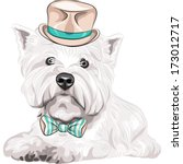 animal,bangs,beautiful,beige,bow,breed,cartoon,charming,cute,dog,doggie,doggy,drawing,elegant,fashion