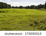 meadow in brandenburg  germany | Shutterstock . vector #173050313
