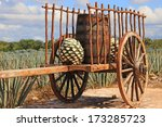 old mexican trailer in front of ...   Shutterstock . vector #173285723