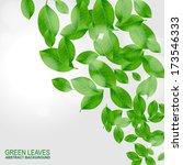 green leaves vector background   Shutterstock .eps vector #173546333