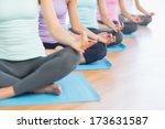 closeup of cropped sporty women ...   Shutterstock . vector #173631587