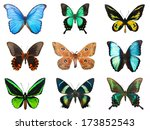 collection of beautiful... | Shutterstock . vector #173852543