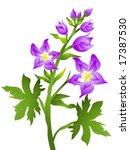 delphium   vector | Shutterstock .eps vector #17387530