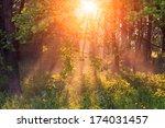 The Rays Of Dawn Sunlight Pass...