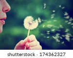 A Girl Blowing On A Dandelion...