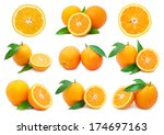 collection of fresh orange... | Shutterstock . vector #174697163