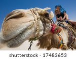 two girls are ride on camel in... | Shutterstock . vector #17483653