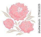 pink peonies | Shutterstock .eps vector #175161323