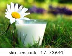 milk | Shutterstock . vector #17573644