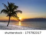 beautiful sunrise at key west ... | Shutterstock . vector #175782317
