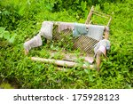 Old Bamboo Bench Overgrown By...